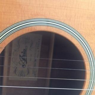 ariaのアコースティック(アンプに繋がる)ギター
