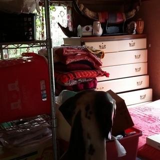 小松市で空き家の荷物整理、遺品整理、生前整理をするなら買取から整...