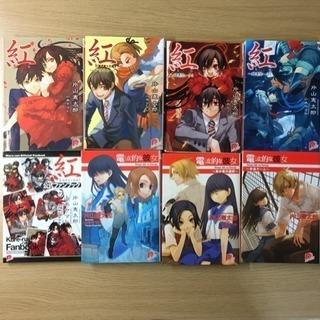 【未完セット】小説 紅4巻+公式ファンブック、電波的な彼女全3巻完結
