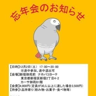 鳥好きさん集まれ☆大好き!愛ピヨ会忘年会!