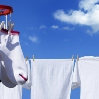 ✨【BWもドラム式も完全分解洗浄!】🌞ホスピタクリーンさとう福山市から生活家電修理エージェントが、完全分解の出張洗濯機クリーニング致します!✨☆毎日のお洗濯をきれいで快適な洗濯機で!☆ − 広島県