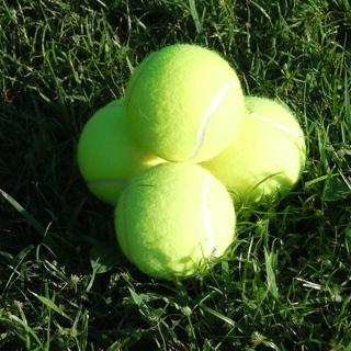 硬式テニスが好きな方募集