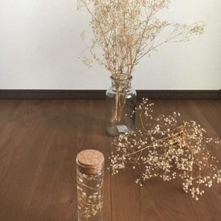 リースやハーバリウムの花材にも最適 カスミソウ(ドライフラワー) 1束