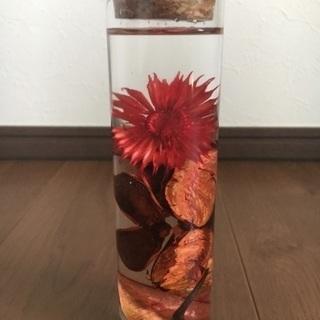 ドライフラワーをアレンジ ハーバリウム(植物図鑑)オレンジ系