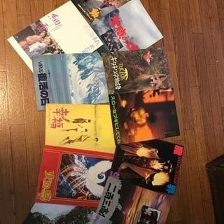 映画のパンフレット50冊