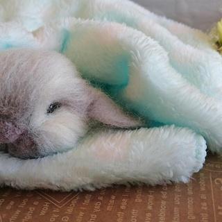 みるここフェルトの羊毛フェルト教室『胸キュンポーズのリアル動物講座...