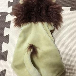 ペット洋服 ライオン着ぐるみ