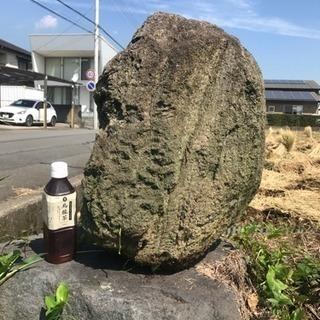 軽石 原石 庭石 植木鉢