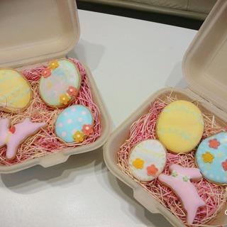 アイシングクッキー教室 始まります!!  初回お試し500円♪