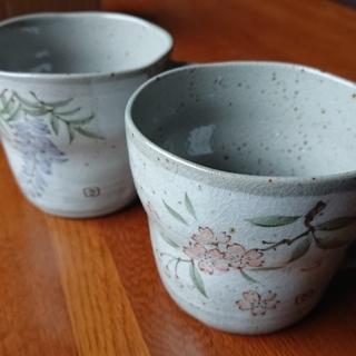 美濃焼き コップ 藤と桜