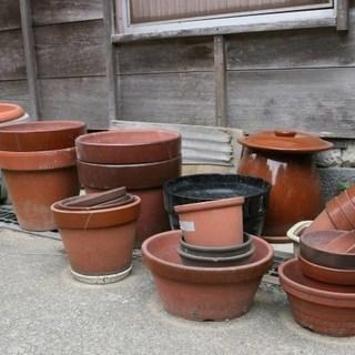 いらない植木鉢など頂けませんか!