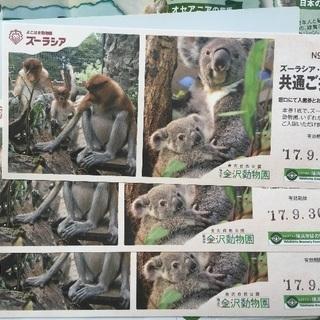 ズーラシア&金沢動物園共通ご招待券三枚