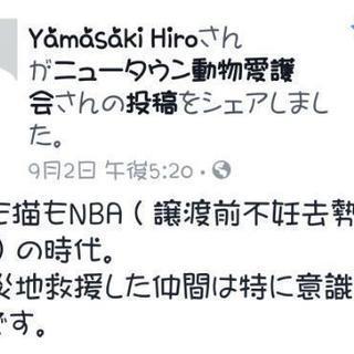 2017/11/09㈭・トライアル決定☆眼球摘出術&去勢手術実施済...