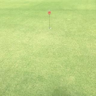 初心者向けゴルフサークルのメンバー求む