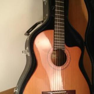 【中古美品】エレガット(クラシック)ギター