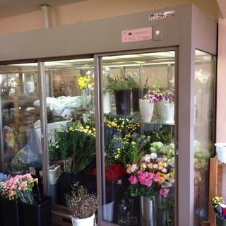花屋さん冷蔵庫