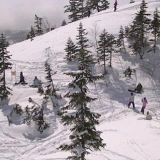 北海道でスノーボード