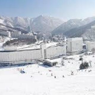 🎿寮あり 冬のゲレンデで青春謳歌‼ スキー場スタッフ大募集🎿