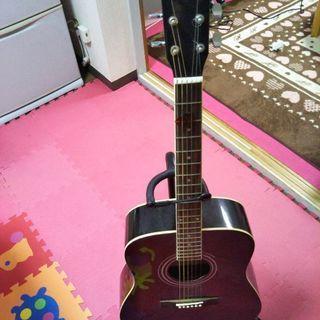 アコースティックギター HONEY BEE