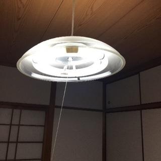 天井照明 (使用可能電球付き)