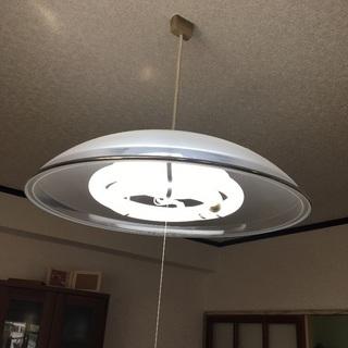 天井照明(使用可能電球付き)