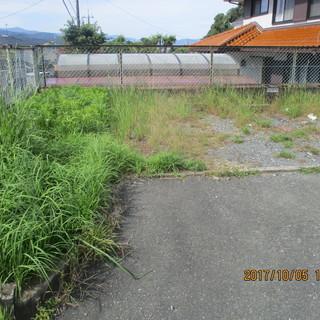 アパートの剪定と草刈