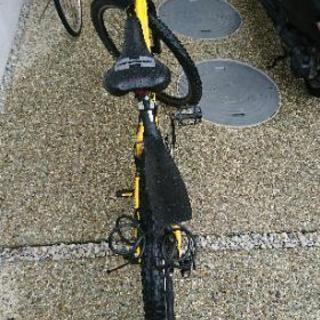 今年購入のジャンクハマーマウンテンバイク