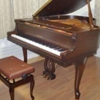 福井音楽教室 ヴァイオリン、ヴィオラ、ピアノ、ソルフェージュ
