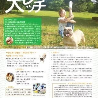『犬レッチ🎶』 犬と一緒❤︎のびの〜びバレエストレッチ