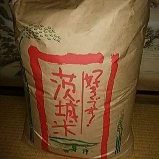 玄米コシヒカリ30キロ
