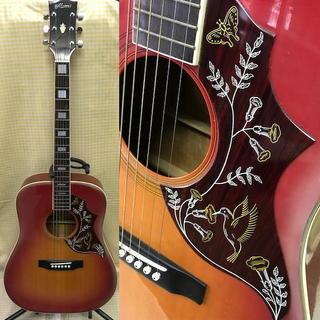 Morris/モーリス/アコースティックギター/ハミングバード/W...