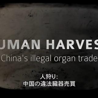 12/10(日)・映画『人狩り(Human Harvest) 』上...