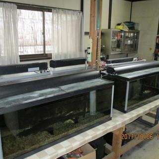 水槽ガラス120  オーバーフロー式