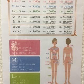 最新SHR脱毛機導入50%オフキャンペーン!最短6ヶ月で脱毛完了! − 神奈川県