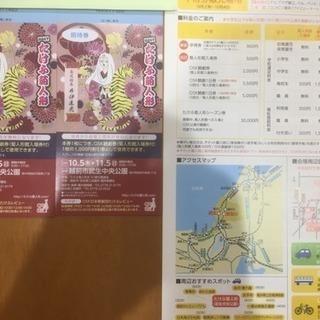 武生菊人形展 割引券