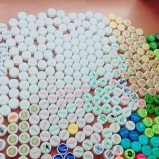 ペットボトルのキャップ394個です