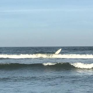 サーフィン仲間//都内から相乗りサーファー募集