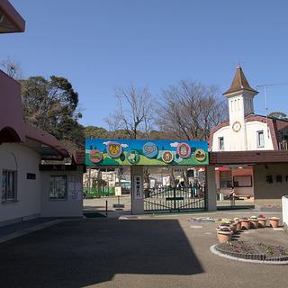10月28日(10/28)  動物たちに癒されよう!福岡市動植物園...