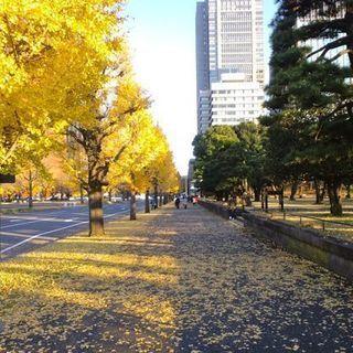 10月28日(10/28)  野球好き集合!外苑バッティングセンタ...