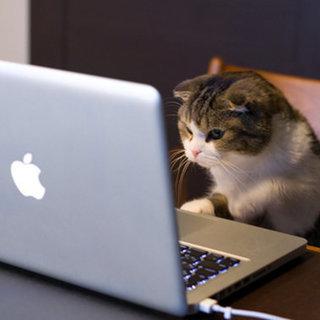 パソコン事務&軽作業を頑張ってくれる方を募集しています!