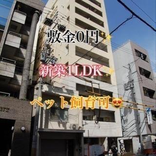 敷金0円😳新築駅近1LDK✨
