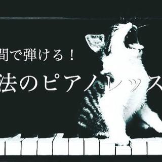 ピアノや楽器を自由に奏でれる!魔法の音楽レッスン