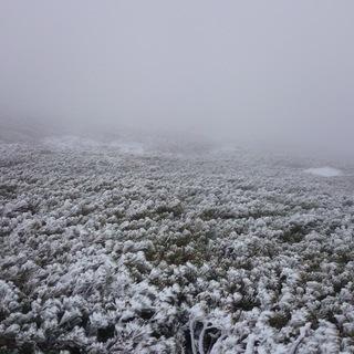 【新規・スノーボード】 山すべり 【初心者・初級者】