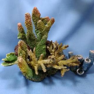 熱帯魚 珊瑚 サンゴ レプリカ 2点セット セットA