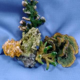 熱帯魚 珊瑚 サンゴ レプリカ 2点セット セットB