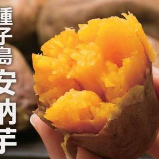 安納芋(種子島産)