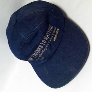 アポロキャップ ブルー 青 ジーンズ 作業帽 フリーサイズ
