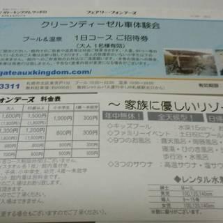 ガトーキングダムサッポロ 大人プール温泉1日券