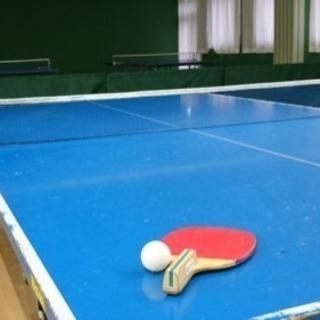 卓球しませんか??