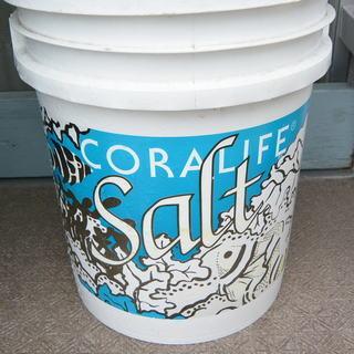 海水魚用 CORA LIFE ソルト